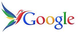 Google Hummingbirg est un algorithme essentiel pour comprendre le SEO.