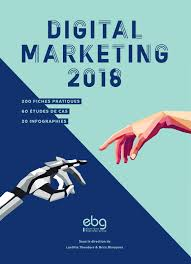 Livre Digital Marketing 2018 EBG