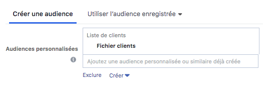 creer audience fichier clients facebook ads