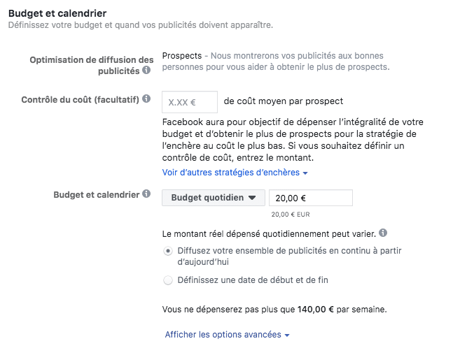 budget et encheres campagne facebook lead ads